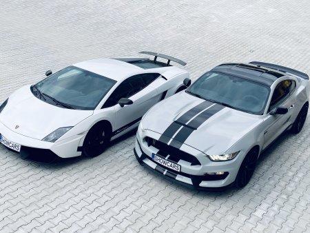 Lamborghini vs Mustang